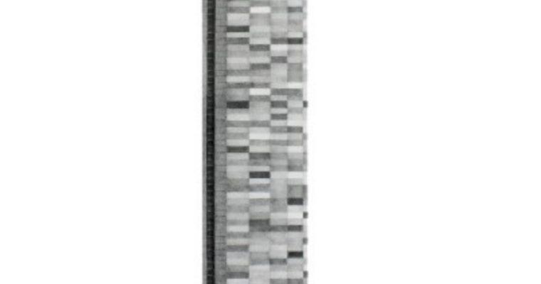 [EXPO] 17.03→29.04 – ÉLÉPHANTS BLANCS – EXPOSITION PERSONNELLE D'AMÉLIE SCOTTA – UNDER CONSTRUCTION GALLERY PARIS