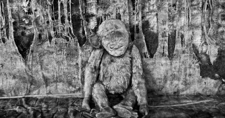 [EXPO] 01.07 ▷ 26.08 – Photographies de Roger Ballen – Le théâtre de l'esprit – FLAIR Galerie, Arles