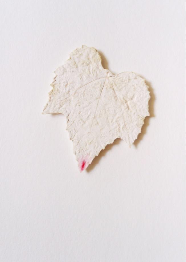 Cécile Hug - Blason du Corps - Galerie de la Voûte Paris - La Sève (2017)