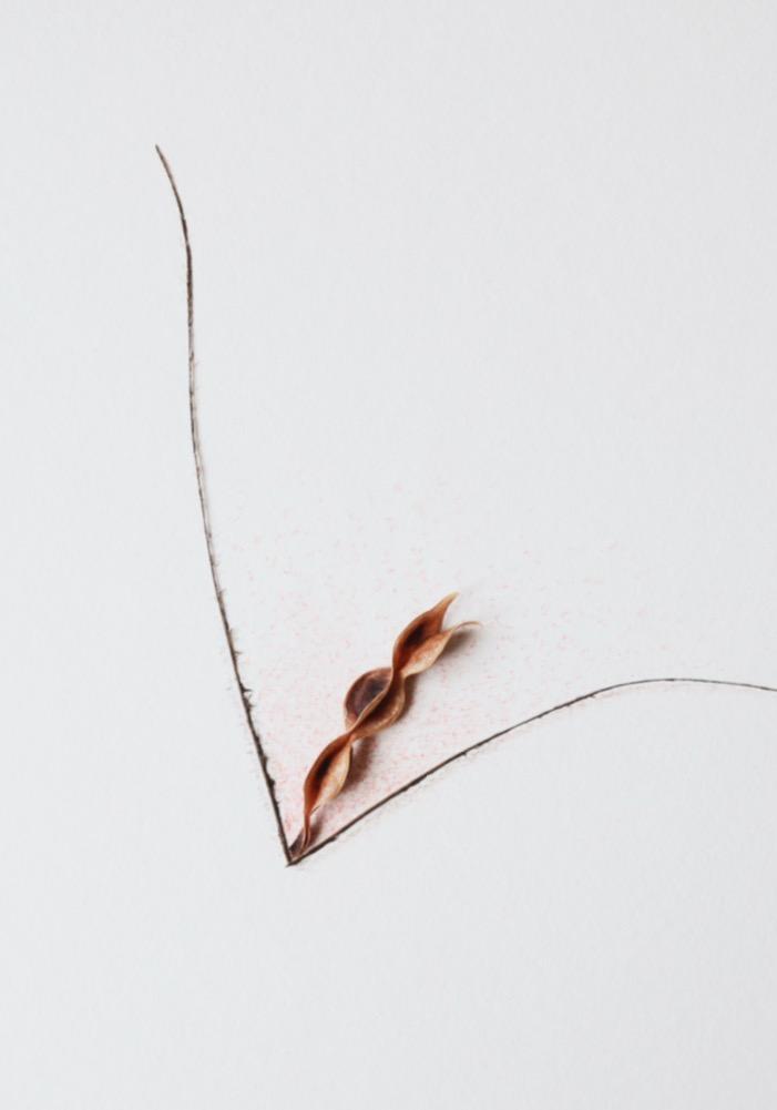 Cécile Hug - Blason du Corps - Galerie de la Voûte Paris - De lèvres par 3 (2017)