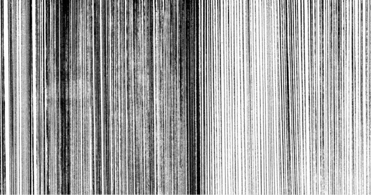 [EXPO] 10.06—01.07 – Marta Budkiewicz – Ligne(s) – progress gallery Paris