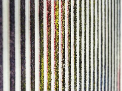 Steven-Cox_Giving Me Excitations_Galerie-Jérôme-Pauchant