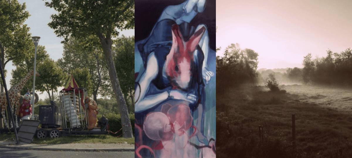 [EXPOSITION] 08/01 ▷ 24/02 – Mycorhizes – Espace d'exposition du Millénaire – La Madeleine