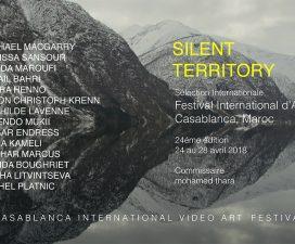 24▷28/04 – FIAV 2018 – FESTIVAL INTERNATIONAL D'ART VIDÉO DE CASABLANCA, MAROC