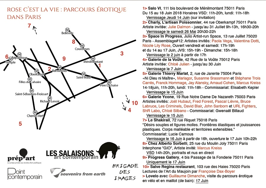 Salo VI - Salon du dessin érotique - Paris