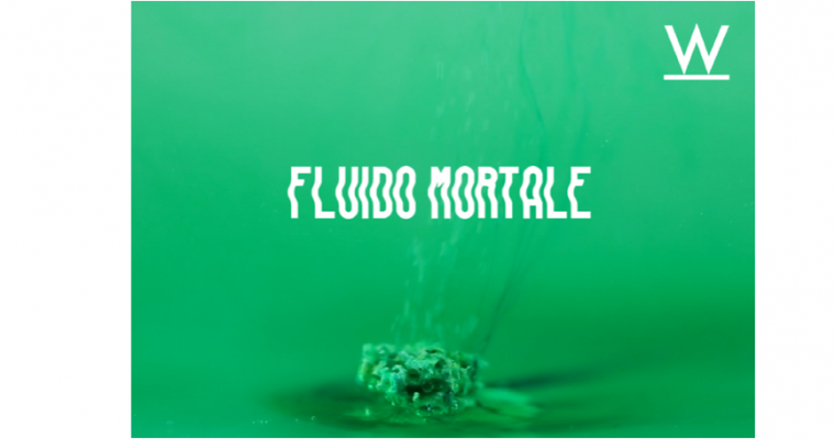 10▷20/05 – CHLOÉ DUGIT-GROS – FLUIDO MORTALE – ATELIER W PANTIN
