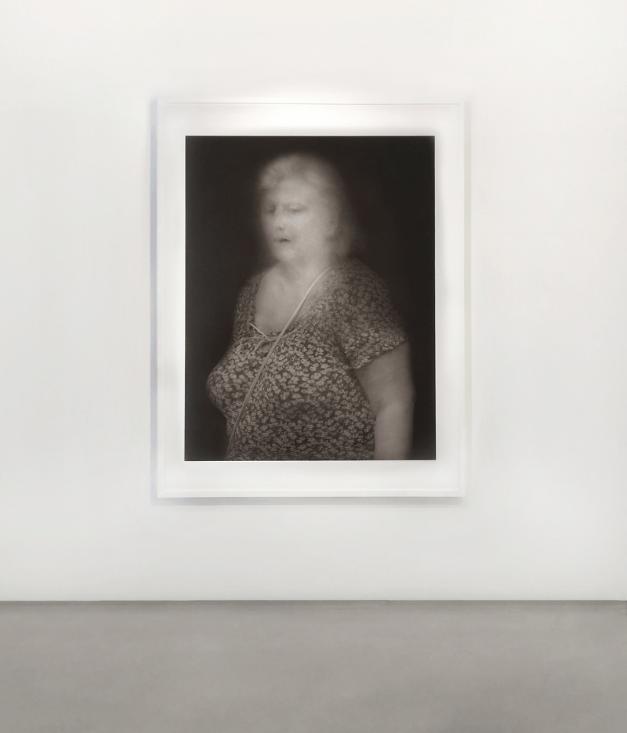 Thomas Devaux- exposition-Rayons - Galerie Bertrand Grimont Paris