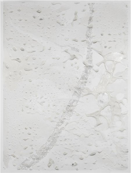 Ana Zulma - L'Etrange Evidence - Galerie Françoise Besson