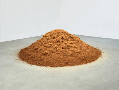 Caroline Le Méhauté, Négotiation 57 - Grow, Grow, Grow, 2013, terre de coco, Dimensions variables