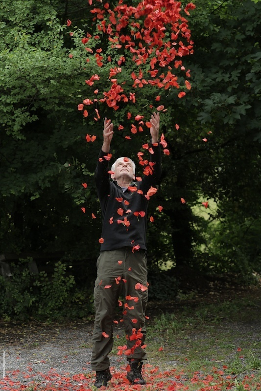 Andy Goldsworthy, Penché dans le vent, un film de Thomas Riedelsheimer