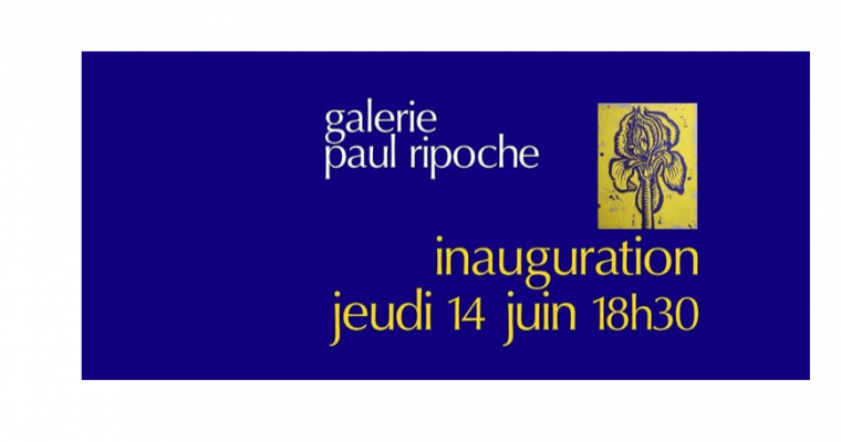 14/06 – IMAGI-MAGIE-MAGES – GALERIE PAUL RIPOCHE – LYON