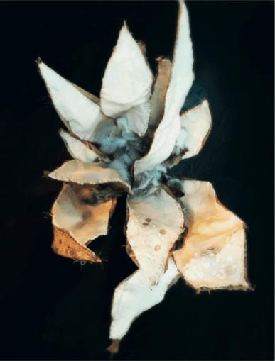 Zoé RUMEAU_Sculpture Cactus_exposition_Utopia Botanica_Galerie Laure Roynette