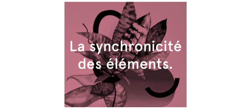 exposition_La synchronicité des éléments._CACN – Centre d'Art Contemporain de Nîmes.