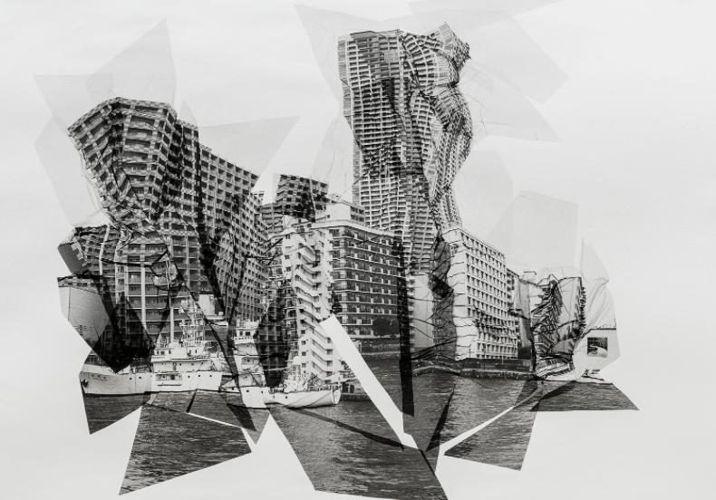 Sylvie Bonnot_Grande Mue Shioji Maru_Galerie Ségolène Brossette_biennale de l'image tangible