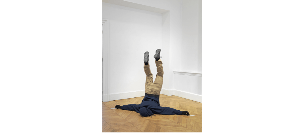 27/10▷08/12 – MARK JENKINS – BRD SHT – DANYSZ GALLERY PARIS