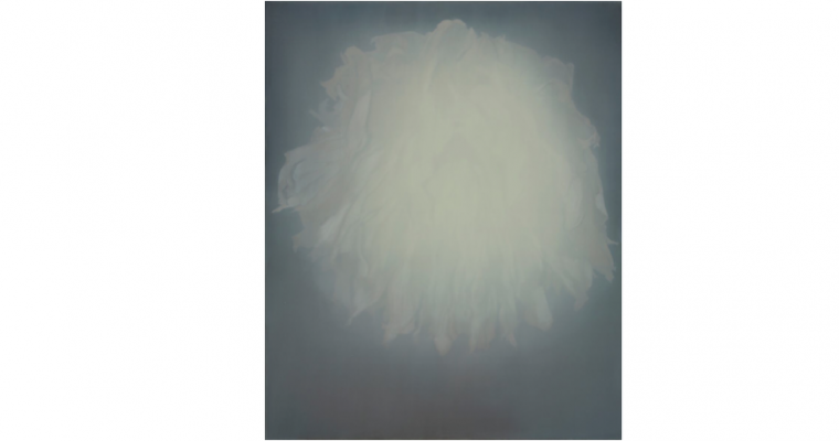 15/11▷22/12 – EFFACEMENT(S) – GALERIE CNEUCHÂTEL