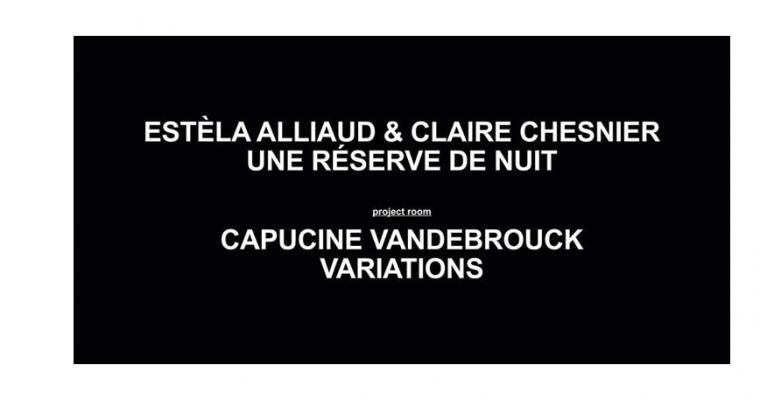 31/01 AU 07/03 – ESTÈLA ALLIAUD & CLAIRE CHESNIER / CAPUCINE VANDEBROUCK – GALERIE ART & ESSAIRENNES