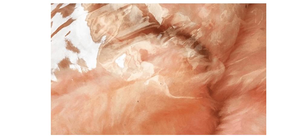 02/02 AU 09/03– GWENDOLINE PERRIGUEUX – VELVET LASHES – GALERIE ERIC MOUCHETPARIS