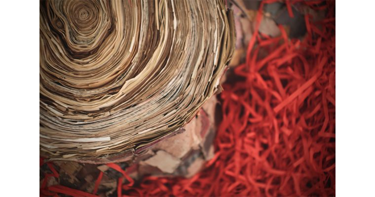 09/01 AU 29/04 – Rachel Marks – Naturae Liber, Bridge Project – Children's Museum of the Arts New York