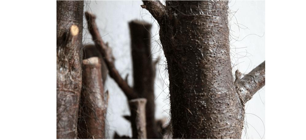 09/03 AU 11/04 – FLORIAN MERMIN – CARESSE DE FORÊT (LE SOIR OÙ TU M'AS QUITTÉ) – BACKSLASH PARIS