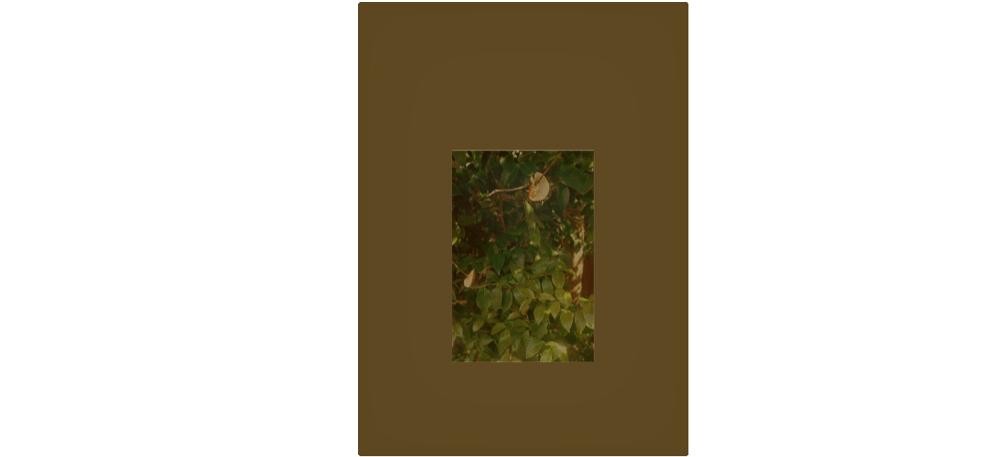 15/03 AU 20/04 – STÉPHANIE RAIMONDI & NOBUYOSHI TAKAGI– LE FEU, LA LUMIÈRE, LE TEMPS QUI PASSE – GALERIE HOUG, PARIS
