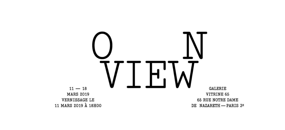 11 AU 17/03 – ON VIEW – VITRINE 65, PARIS