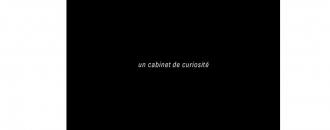 Céleste Boursier-Mougenot – un cabinet de curiosité – 20/04 au 25/05 – Xippas Paris