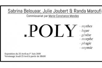 Sabrina Belouaar, Julie Joubert & Randa Maroufi – Poly – 25/04 au 01/06 – Galerie Houg, Paris