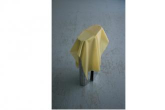Marina Stanimirovic – The animal behind your neck – 10/04 au 31/05 – Galerie Tator, Lyon