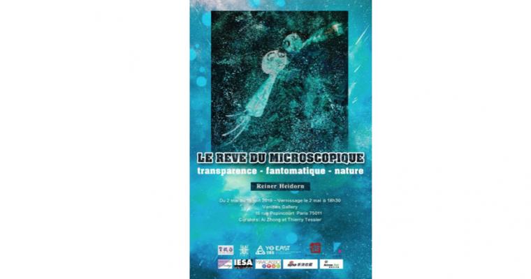 Reiner Heidon – Le rêve du microscopique – 02/05 au 15/06 – Vanities Gallery, Paris