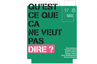 Qu'est ce que ça ne veut pas dire ? – 17 au 25/05 – galerie de l'IESA arts&culture, Paris