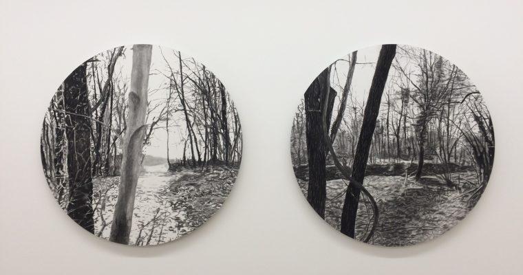 Nicolas Pincemin / Paul Vergier / Matthieu Montchamp – PASSEGGIATA – 25/04 au 08/06 – Galerie Béa-ba, Marseille