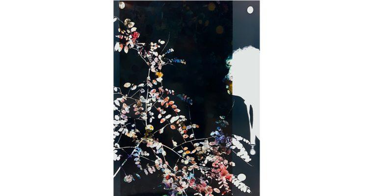 Baptiste Rabichon – Ranelagh – 22/06 au 01/09 – Lieux Mouvants, Lanrivain