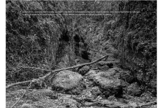 Favret & Manez avec Sophie Braganti – A deux pas des chiens (Vallons de ville) – 05/07 au 30/08 – galerie sintitulo, Mougins