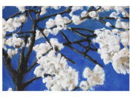 Cristof Yvoré – Pots, lapin, fenêtres, fleurs – Du 28/06 au 22/09 – FRAC Provence-Alpes-Côte d'azur