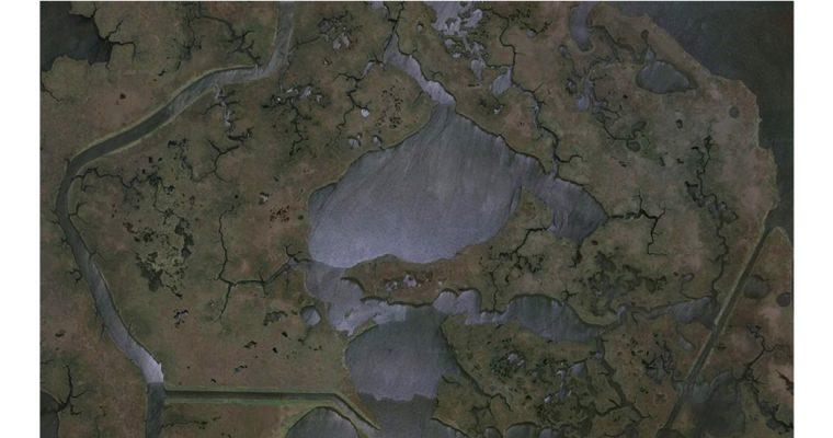 Elsa Brès – Blind swamp – 02 au 07/07 – Domaine de Candé, Monts
