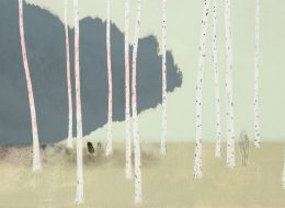 Andreas Grunert – Secrets – 01/09 – 06/10 – Galerie DYS, Bruxelles