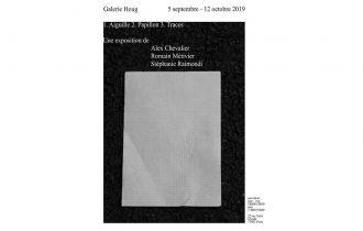 1. Aiguille 2. Papillon 3. Traces – 05/09 au 12/10 – Galerie Houg, Paris