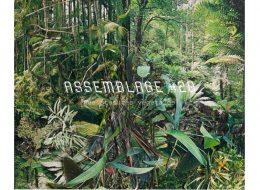 Assemblage #20 – Des statures végétales –  14/09 au 05/10 – Julio Artist-Run Space