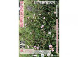 Rapprochement #4 – Toile de fond – 24/08 au 29/09 – Lys, Aquitaine