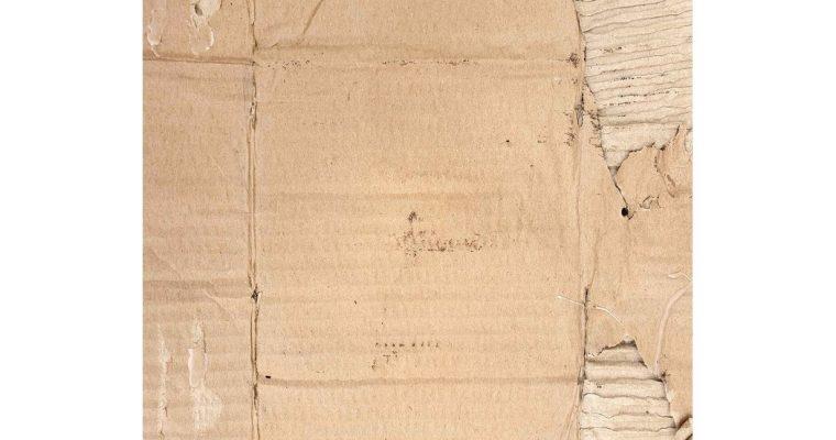 Carton – 20/09 au 12/10 – Galerie Mathgoth, Paris