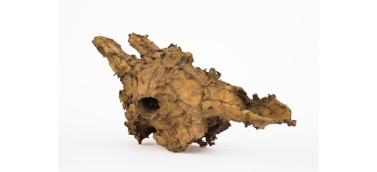 Et les chimères se dévoilent à l'ombre d'une étoile –  19/09 au 26/10 – Galerie C, Neuchâtel