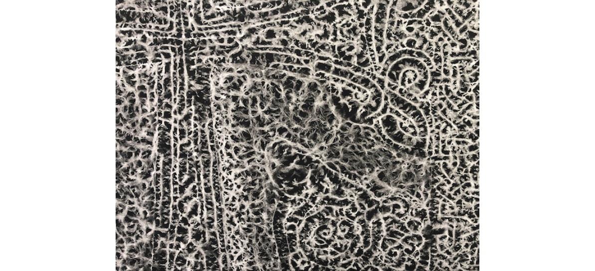 Pascal Convert – Trois Arbres – 05/10 au 23/11 – galerie Eric Dupont, Paris