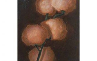 Cristof Yvoré – Pots, lapin, fenêtres, fleurs –  10/10 au 19/01 – FRAC Auvergne