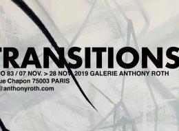Ditno83 – Transitions – 07 au 28/11 – Roth Contemporain, Paris