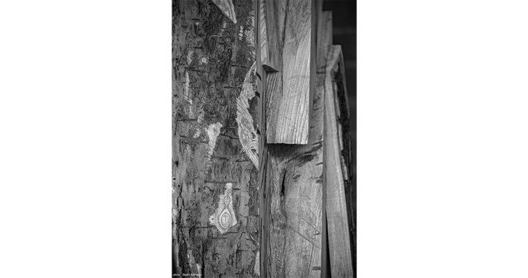 STEPH COP – Allégorie – 24/10 au 30/11 – Galerie Slika Lyon