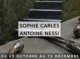 Sophie Carles – Antoine Nessi – 25/10 au 15/12 – Usine Utopik