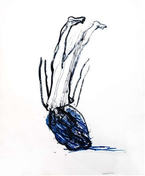 Awena Cozannet_exposition On marche sur la tête_Galerie Françoise Besson Lyon