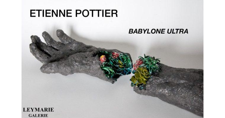 Etienne Pottier – Babylone Ultra –  28/11 au 25/01 – Galerie Leymarie, Paris