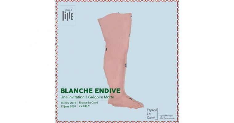 Carte Blanche à Grégoire Motte – Blanche Endive – 14/11 au 12/01 – Espace Le Carré, Lille